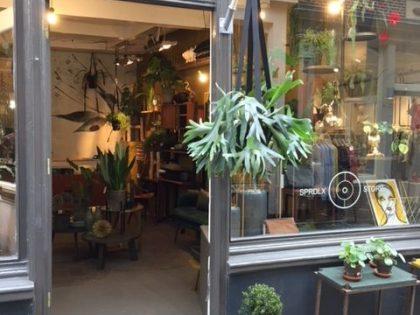 Meest eigenzinnige winkel in Alkmaar